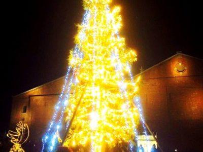 <p>点灯!17000球の光でクリスマスツリーが光り輝きます。点灯直後に半田少年少女合唱団の皆様による「ひいらぎ飾ろう」で会場内は幻想的な雰囲気に包まれました。</p>